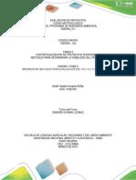 Dasarrollo Tarea 2 Productividad Evaluacion de Proyectos
