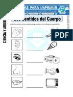 Ficha-de-Los-Sentidos-del-Cuerpo-para-Segundo-de-Primaria (1).doc