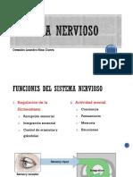 2 Sistema Nervioso