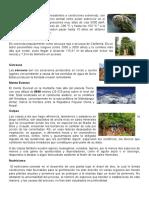 TAREA-APUNTES.docx