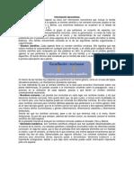 Información Taxonómica