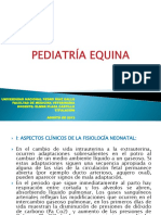 PEDIATRÍA EQUINA