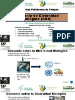 Convenio de Diversidad Biológica