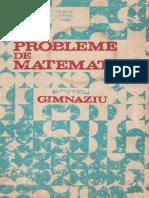I. Petrica-Probleme de matematica pentru gimnaziu.pdf