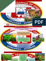 PRODUCCION-AGROPECUARIA