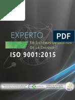 Programa de Formación EXPERTOS en Sistemas de Gestión de La Calidad ISO 9001v2(1) JULIO