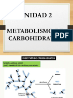 3 METABOLISMO CARBOHIDRATOS