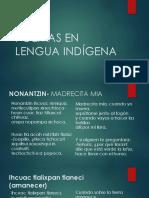 Poemas en Lengua Indígena