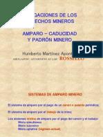Consulta Participacion Mineria (1)1