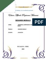 SEGUNDO Modulo Edwin Poquioma Mamani