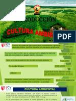35516_7000415033_04-01-2019_184518_pm_CULTURA_AMBIENT.pdf