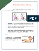 Caracteristicas de Los Signos Vitales (1)