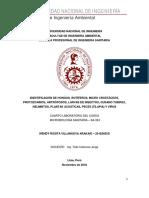Informe 4 - Microbiologia Sanitaria II