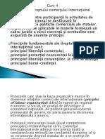 4. Principiile DCI