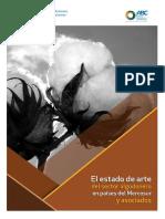 Cadena algodon sudamerica.pdf