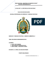 MARIN DA SILVA hidroenergetico final.docx