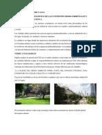 Diseño Urbano II