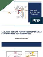 Seminario 10 Función Glomerular y Tubular