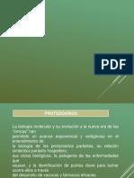 PROTOZOARIOS.pptx