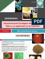 04 Levaduras Clase 4