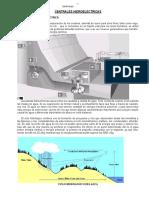 hidroelectrica.docx