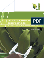 Calidad Banano Exportacion