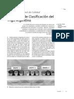 Trigo, clasificación y proteínas
