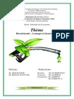 Biocarburants  Avantages et Inconvénients.pdf