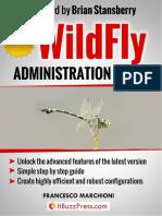 ItBuzzPress WildFly Admin Preview