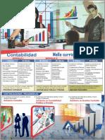 malla curricular contabilidad.pdf