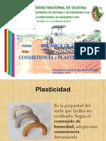 LIMITES DE CONSISTENCIA.pdf