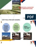Presentacion Seguridad Aeroportuaria