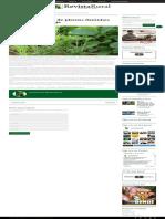 Cresce Incidência de Plantas Daninhas Nas Lavouras de Soja – Revista Rural