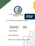 Investigacion Norma 14001