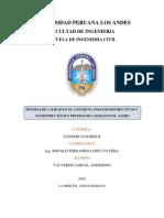 Construcciones II Monografia