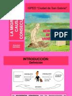 98127106-Migracion-Causas-y-Consecuencias.pdf
