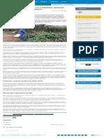 Agricultores Brasileiros Unem-se a Cientistas Nucleares Para Utilizar Fertilizantes Orgânicos _ ONU Brasil