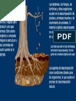 Tecnicas Compostaje y Lombricultura1