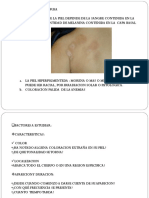 Lesiones Primarias en Dermatologia