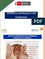 Presentación 16-3 Aparato Reproductor Femenino