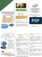 Triptico Practicas Justas Investigador PDF
