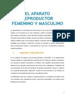 5568284fe5764.pdf