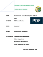 CONTAMINACION-POR-LA-MINERIA-ILEGAL-EN-MADRE-DE-DIOS.docx