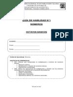 GUIA DE HABILIDADES N°1.doc
