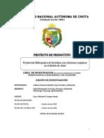 PROYECTO PRODUCTIVO-HIDROPONICOS