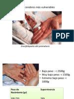 3. Plasticidad y Daño Cerebral Temprano