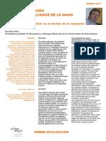 arginasa como respuesta inmune.pdf