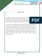 INFORME-FINAL-COVERTURAS.docx