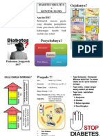 Leaflet Diabetes Melitus