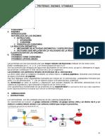 1. Aminoacidos. Estructura_ 4. Proteínas. Enzimas. Vitaminas